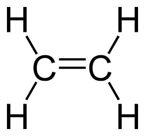 Ethylene molecule
